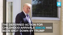 Trump officially ends DACA immigration program