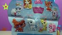 Boîte de palais animaux domestiques Princesse doux disney disney suites boîte animaux royales princesse de έκπ
