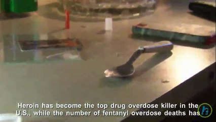 Which Drugs Cause The Most Overdose Deaths?