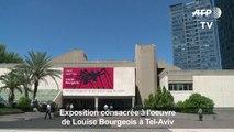 [Art] Exposition consacrée à l'oeuvre de Louise Bourgeois à Tel-Aviv