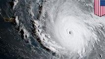 颶風分級制度 TomoNews說分明