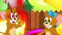 SNAKE TOM Tom and Jerry Full Episodes #Cartoon For Kid #Animation Movies Baby #Disney Movie