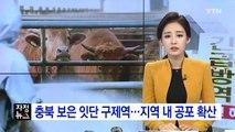 충북 보은서 6번째 구제역...지역 내 공포 확산 / YTN (Yes! Top News)