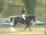 Orange CSO petit Grand Prix 115