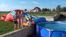 Gelé Jeu patrouille patte vidéo Dans le et Jeu avec chiot patrouiller la patrouille chiot piscine de requin fo