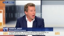 "Selon Yannick Jadot, Nicolas Hulot ""n'a pas encore gagné son pari"""
