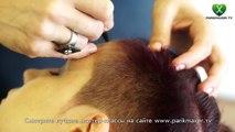 Creative hair tattoo парикмахер тв parikmaxer.tv