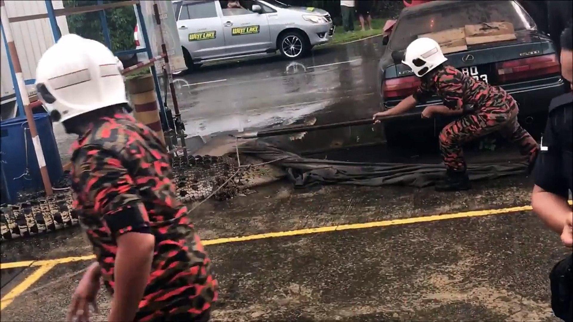 بالفيديو.. في 60دقيقة رعب.. تمساح يهجم على محطة بنزين