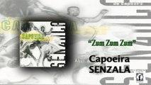 Mestre Peixinho & Grupo de Capoeira Senzala - Zum Zum Zum