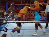Shawn Michaels vs Mr. Perfect  (1991 WWF)