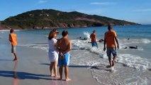 Ce touriste filmait l'océan mais ne s'attendait pas à voir des dizaines de dauphins s'échouer devant lui