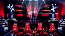 The Voice 7 : Pascal Obispo, Mika, Zazie, Florent Pagny, leur salaire dévoilé !