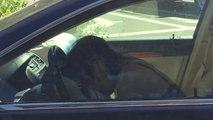 Cette conductrice droguée fuit une collision avec son airbag explosé !