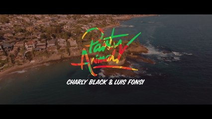 Charly Black - Party Animal