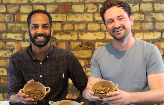 Enjoy A Five-Course Feast - Of Insects |MAKING MAD