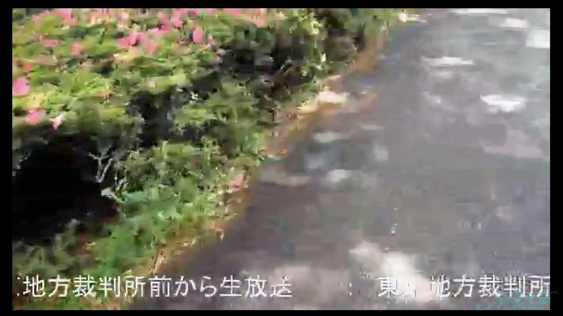 2017/06/01【わくわく、横山緑、野田他】東京地方裁判所前から【HD】