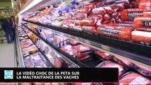 PETA : la nouvelle vidéo choc pour dénoncer la maltraitance des vaches