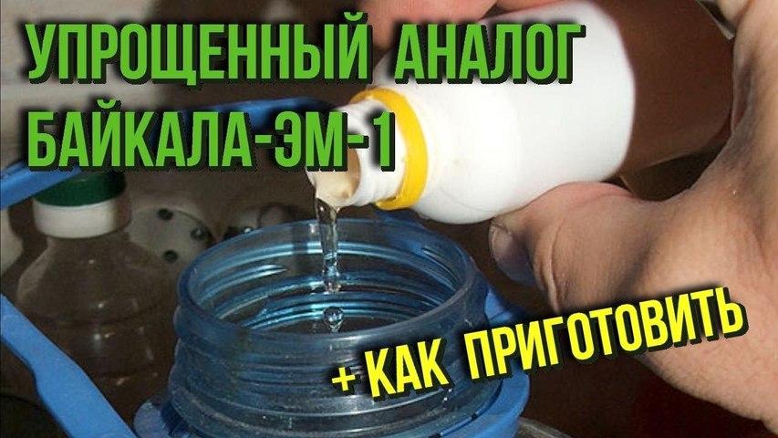 Упрощенный аналог широко известного Байкала-ЭМ-1 Как приготовить в домашних условиях