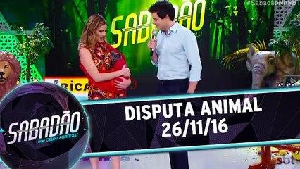 Disputa Animal - 26.11.16