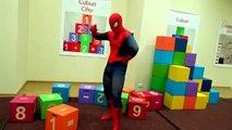 Des bandes dessinées compte éducatif Anglais dans enfants Apprendre vie réal homme araignée super-héros vidéos famille