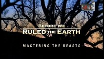 Mastering the Beasts - Before we Ruled the earth - Part 2