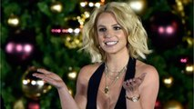 Britney Spears reportedly spent nearly $30,000 on her dogs last year