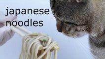 Nissin noodles|Nissin Donbei Soba With Tempura|cup noodles