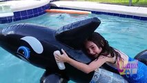 Dolphin Ride in Goa Kid Girl Playing In Pool Fun Riding A Killer Dolphin Cammi is a happy