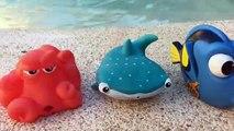 Découverte doris film bain jouets la natation avec doris piscine aventure enfant amicale jouets