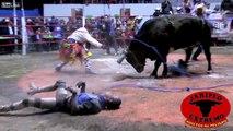 Enormes KO en Rodéo au Mexique ! Pas drôles ces Taureaux géants..