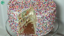 How to Make a Funfetti Sprinkle Party Cake: Howdini Cakes