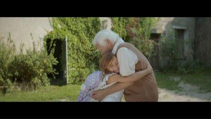 Florent Pagny - La beauté du doute