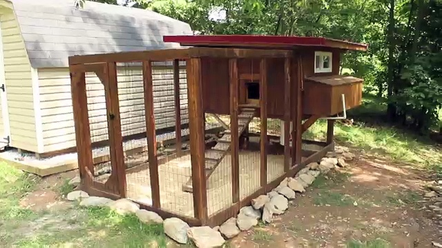 Backyard chickens – Chicken coop tour- Easy to clean
