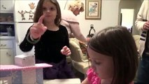 Moxie Girlz Snow Cabin It Really Snows Super Fun Playset 5 Stars ***** Star Review