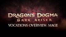 Dragon's Dogma : Dark Arisen - Mage, Sorcerer, Mystic Knight