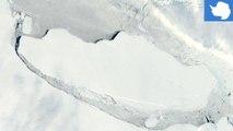 Gunung es A6: Gunung es raksasa sebesar Delware kini mengapung di lautan - TomoNews