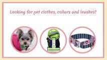 Pet Clothes & Accessories In San Antonio, TX