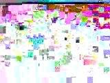 2005_sound systeme - la vi la raide gwada Clip_(Ogs crew)