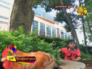 Soorayangeth Sooraya 20/09/2017 - 326
