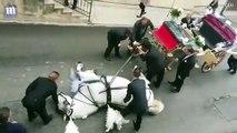 Un cheval qui tirait une calèche pour un mariage, s'effondre à bout de forces