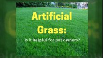 Low Maintenance Pet-Friendly Artificial Grass in Florida