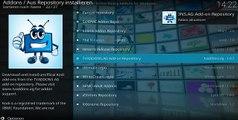 IPTV ( Live TV ) unter Kodi 17 & 18 / SKY Komplett Paket Deutsch