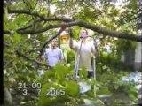 video delire branche en pleine tete