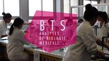 Présentation du BTS ABM (Lycée Marie Curie de Marseille)