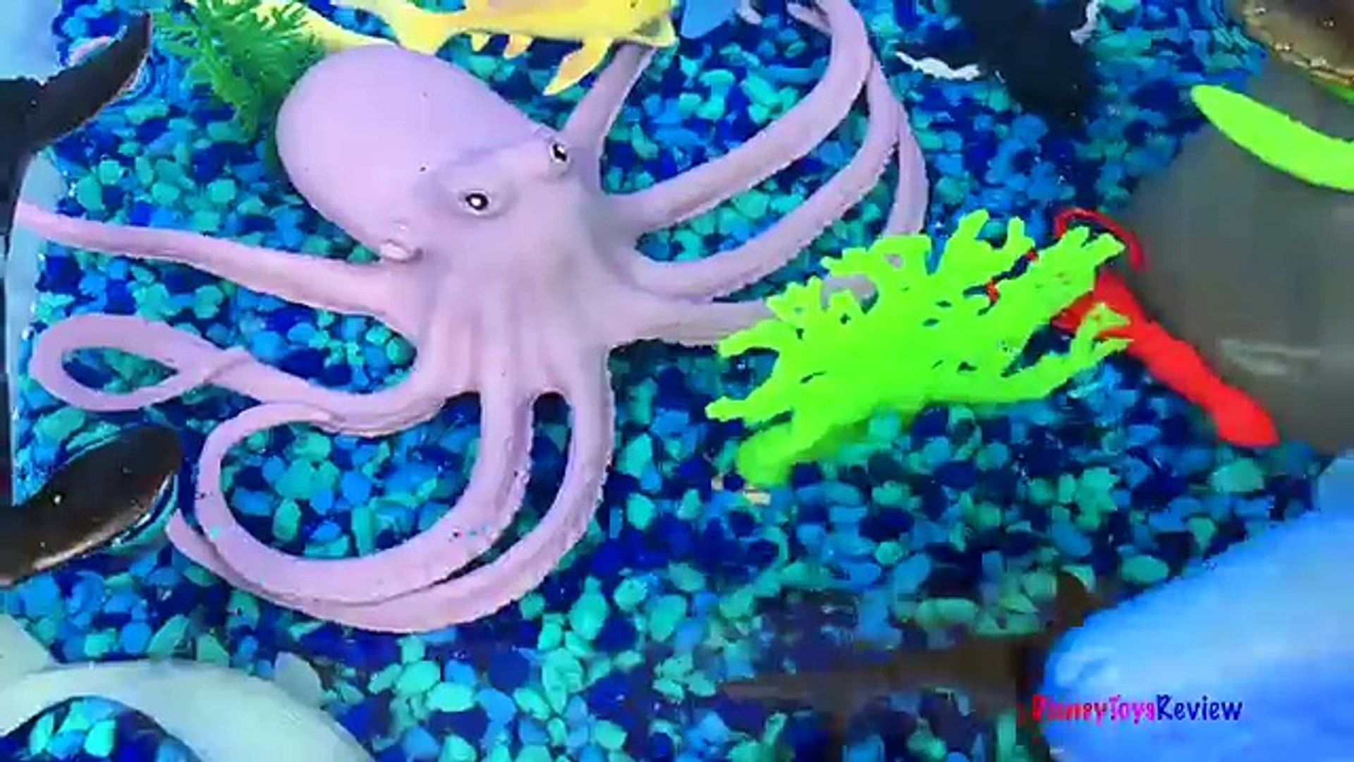ANIMAL PLANET MEGA OCEAN TUB SHARKS DOLPHINS TURTLES SEAHORSE STARFISH OCTOPUS WHALE CRAB - UNBOXING