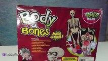 Best YouTube videos - Boby Toys #Boby Toys