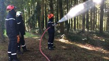 Manœuvre interdépartementale des sapeurs-pompiers à Brocéliande