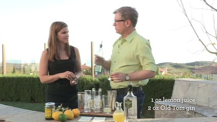 Tom Collins Cocktail - Home Bar Basics with Dave Stolte - Small Screen