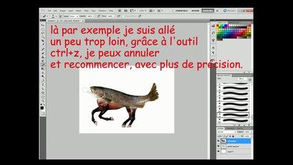 TUTO - Comment créer un cheval saumon sur Photoshop