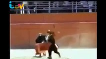 Mexican Female Bull Fighter Got Trolled by Bull